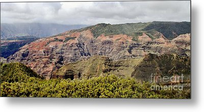 Over The Rim Metal Print by Butch Phillips