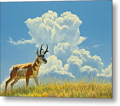 Over The Rise Metal Print by Paul Krapf