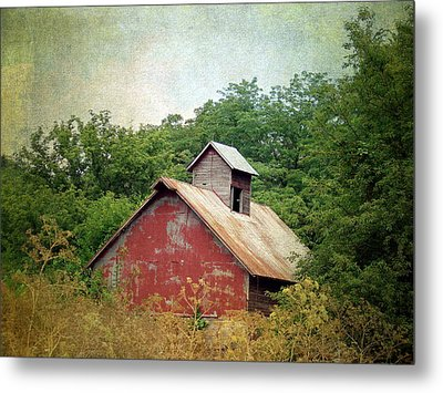Overgrown And Abandoned Metal Print by Cassie Peters