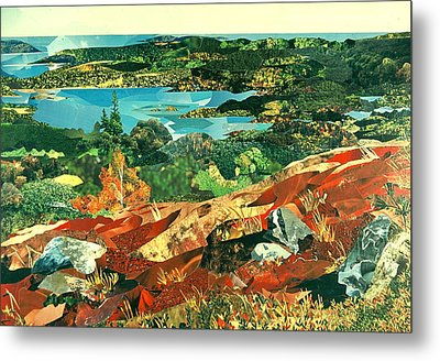 Overlooking The Bay Metal Print by Robin Birrell
