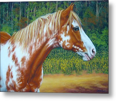 Overo Paint Horse-colorful Warrior Metal Print by Margaret Stockdale