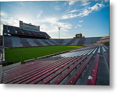 Owen Field  Metal Print