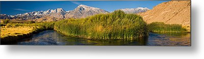 Owens River Flowing In Front Metal Print by Panoramic Images