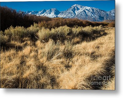 Owens River Valley And Sierra Nevada Range Metal Print by Gary Whitton