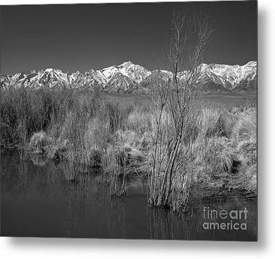 Owens Valley Metal Print by Don Hall