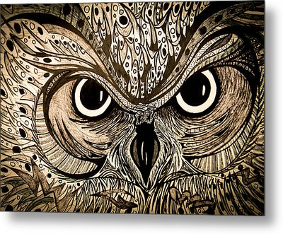 Owl Eyes Metal Print by Nathan Newman