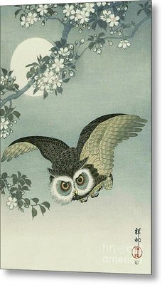 Owl - Moon - Cherry Blossoms Metal Print by Pg Reproductions