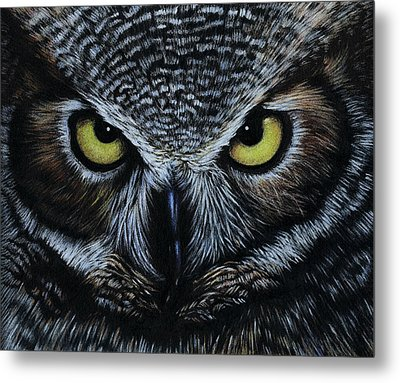 Metal Print featuring the drawing Owl by Natasha Denger