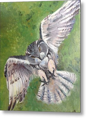 Metal Print featuring the painting Flying Owl by Rose Wang