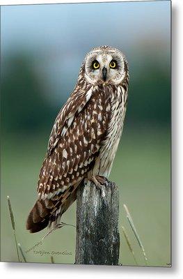 Owl See You Metal Print