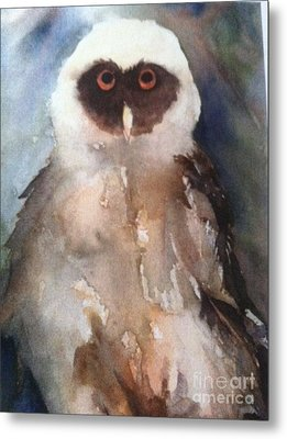 Owl Metal Print by Sherry Harradence
