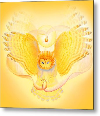Owl Touching The Medicine Song Metal Print