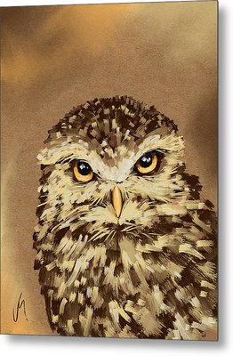 Owl Metal Print by Veronica Minozzi