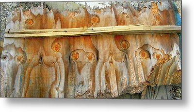Owls In The Wood Metal Print by KD Johnson