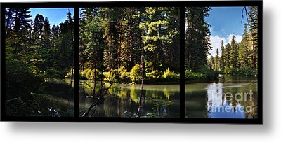 Oxbow Triptych Metal Print by Peter Piatt