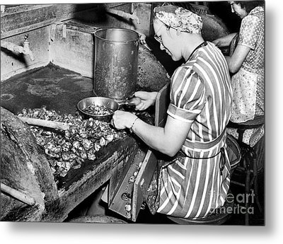 Metal Print featuring the photograph Oyster Industry Shuckers 1948 by Merle Junk