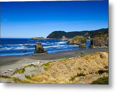 Pacific Coast Metal Print by Donald Fink