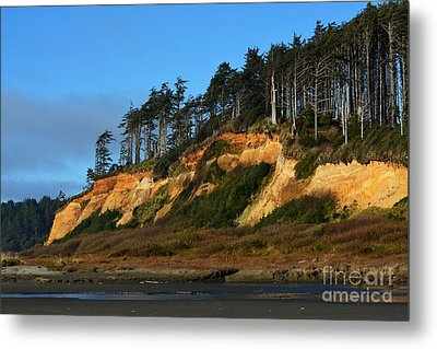 Pacific Coastline Metal Print