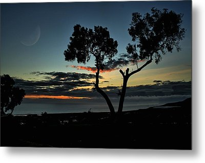 Metal Print featuring the photograph Pacific Evening by Michael Gordon