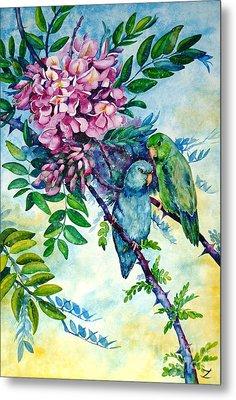 Pacific Parrotlets Metal Print