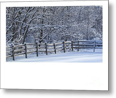 Paddock In Blue Metal Print by Deborah Johnson