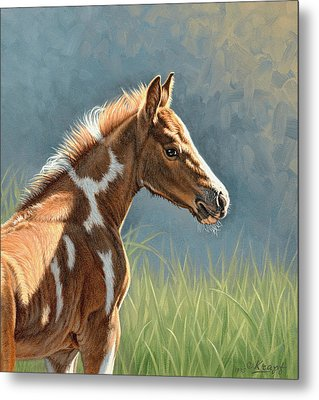 Paint Filly Metal Print by Paul Krapf
