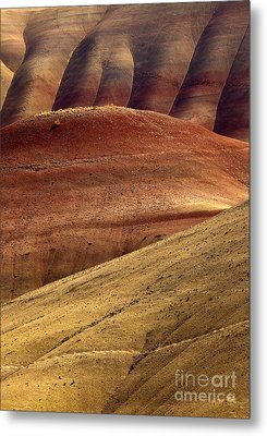 Painted Curves Metal Print by Mike  Dawson