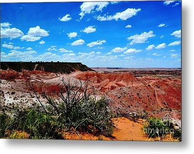 Metal Print featuring the photograph Painted Desert by Utopia Concepts