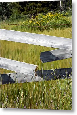 Painted Fence Metal Print