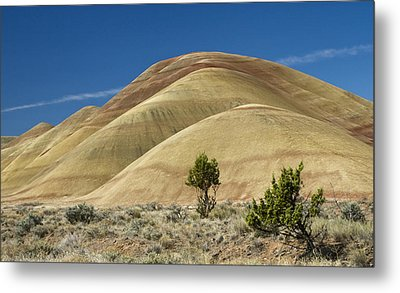 Metal Print featuring the photograph Painted Hills by Sonya Lang