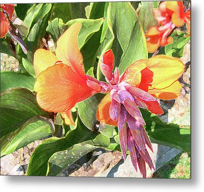 Metal Print featuring the photograph Painted Lily by Larry Bishop