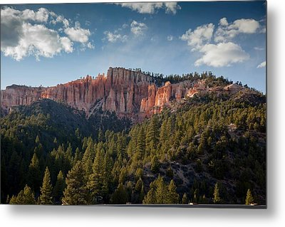 Painted Mountains Metal Print by Margaret Buchanan