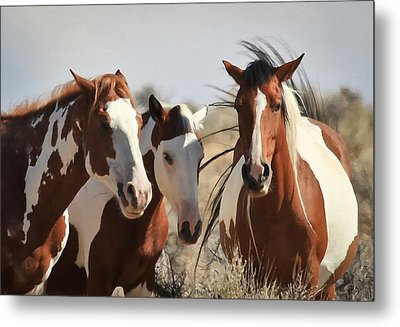 Painted Wild Horses Metal Print by Athena Mckinzie