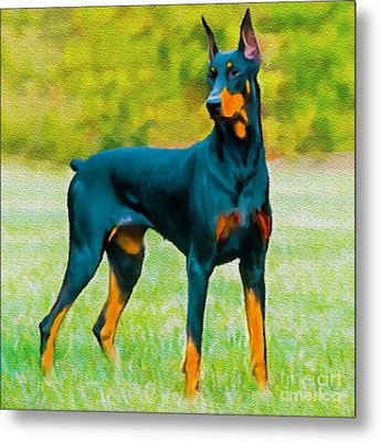 Painting Doberman Pincher Metal Print by Bob and Nadine Johnston