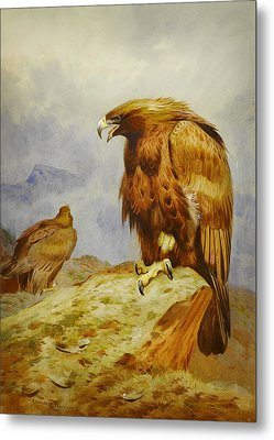 Pair Of Golden Eagles Metal Print by Celestial Images