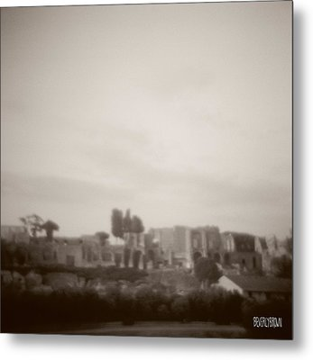 Palatine Hill And Forum Metal Print by Beverly Brown