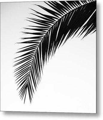 Palm Abstract Metal Print by Tamara Becker