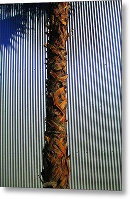 Palm On Sheet Metal Metal Print by Randall Weidner