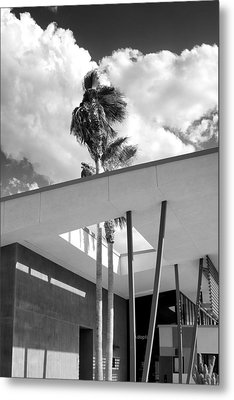 Palm Springs Animal Shelter Palms Bw Palm Springs Metal Print by William Dey