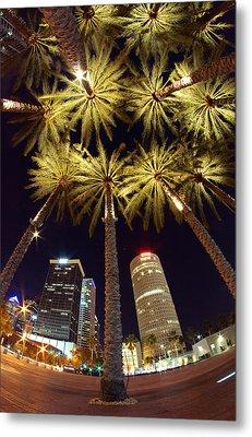 Palm Tree Fireworks Metal Print by Daniel Woodrum