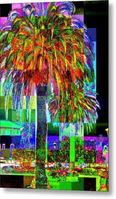 Metal Print featuring the photograph Palm Tree by Jodie Marie Anne Richardson Traugott          aka jm-ART