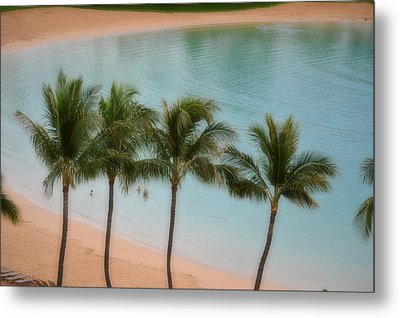 Palm Tree Lagoon Metal Print