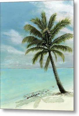 Palm Tree Study Metal Print by Cecilia Brendel