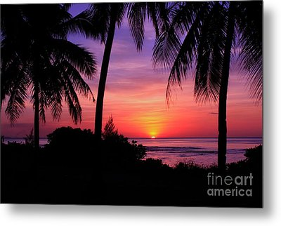 Palm Tree Sunset In Paradise Metal Print by Scott Cameron
