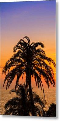 Palm Tree Sunset Vertical Metal Print