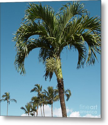 Palm Trees And Blue Sky Metal Print by Sharon Mau