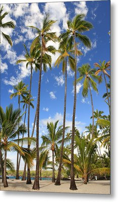 Metal Print featuring the photograph Palm Trees At Pu'uhonua O Honaunau Nhp by Scott Rackers