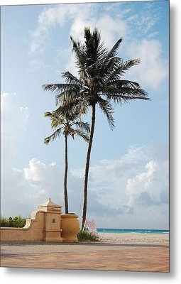 Palm Trees At Sunrise On Hollywood Beach Metal Print by Shawn Lyte