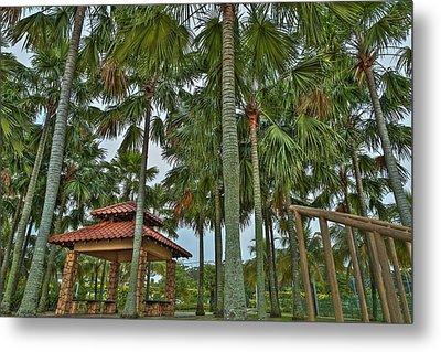 Palm Trees Metal Print by Mario Legaspi