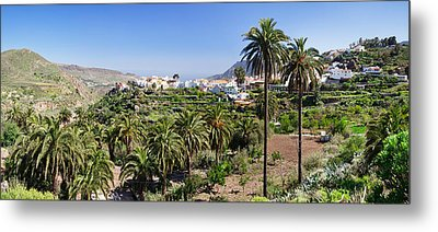 Palm Trees On A Landscape With Town Metal Print by Panoramic Images